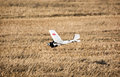 Rc Aircraft Model  Lands In A Yellow Field Royalty Free Stock Photo - 43822295