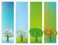 Four Seasons Stock Images - 43857454