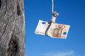 Hanging Fifty Euro Royalty Free Stock Photo - 43881905