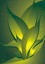Abstract Green Plant Royalty Free Stock Photo - 4391795