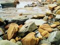 Rocks On Pacific Shoreline Stock Images - 4397634