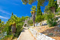 Historic Hvar Fortification Wall In Nature Stock Images - 43961574