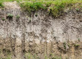 Soil Profile Royalty Free Stock Images - 43964369