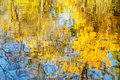 Reflection In Water Yellow Foliage And Blue Sky Stock Photo - 43977140