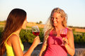 Wine Drinking Women Friends Toasting Glasses Royalty Free Stock Photo - 44001855