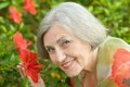 Woman With Red Flowers Royalty Free Stock Photography - 44025497