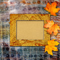 Grunge Paper Design In Scrapbooking Style With Photoframe Stock Images - 44043404