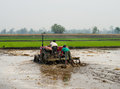 Tractor Plowing A Rice Field In Chitvan, Nepal Stock Photo - 44047490