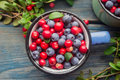 Ripe Forest Berries Royalty Free Stock Photography - 44070367