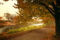 Autumn Forest Park Alley Woods Stock Images - 44070584