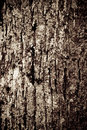 Old Wood Texture Royalty Free Stock Photo - 4411245