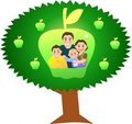 Apple Tree Stock Image - 4419921