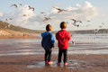 Two Adorable Kids, Feeding The Seagulls On The Beach Royalty Free Stock Photo - 44143275