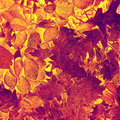 Artistic Autumn Leaves Background Stock Photos - 44164843
