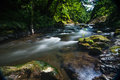 Pacific Northwest River Creek Royalty Free Stock Photos - 44167518