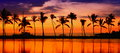 Travel Banner - Beach Paradise Sunset Palm Trees Stock Images - 44168694