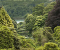 View Over Trebah Gardens Royalty Free Stock Photography - 44168927