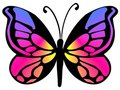 Butterfly 18 Royalty Free Stock Photo - 4429435