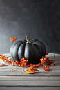 Black Colored Pumpkin With Berries And Leaves Royalty Free Stock Photo - 44226675