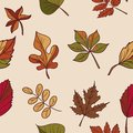 Autumn Pattern. Pattern Of Autumn Leaves. Red, Yellow And Green Leaves Of Forest Trees. Seamless Texture. Use As A Fill Pattern, O Royalty Free Stock Image - 44252136