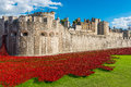 Red Poppies Art Installation At Tower Of London, UK Stock Photos - 44252493
