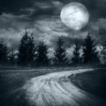 Mysterious Forest Under Dramatic Cloudy Sky At Full Moon Night Stock Photos - 44262083