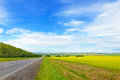 Beautiful Landscape With Green Grass, Blue Sky And Road Stock Photos - 44302443
