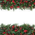 Winter Floral Border Stock Photography - 44351332