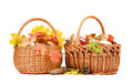 Basket With Mushrooms Royalty Free Stock Photos - 44367398