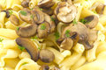 Pasta Dish Gigli Con Funghi Royalty Free Stock Photography - 44377397