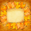 Grunge Paper Design In Scrapbooking Style With Photoframe Royalty Free Stock Photo - 44419325