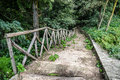 Wooden Stairs / Path Through The Forest Royalty Free Stock Images - 44458079