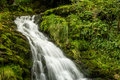 Magical Waterfall Royalty Free Stock Image - 44473886