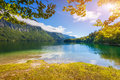 Colorful Summer Morning On The Bohinj Lake In Triglav National P Stock Photography - 44502232