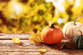 Colorful Fall Harvest Royalty Free Stock Photo - 44518815