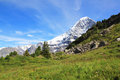 View At The Famous Eiger In Switzerland. Royalty Free Stock Photography - 44522627