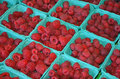 Baskets Of Fresh Red Raspberries Royalty Free Stock Photos - 44528498