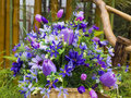 Colorful Artificial Flowers On Basket Stock Images - 44537864