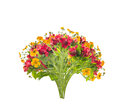 Floral Bunch Of Red And Yellow Flowers,isolated Stock Photos - 44588853