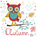 Autumn Floral Card With Cute Owl Stock Photography - 44606412