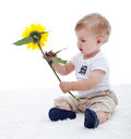 Baby Boy With Flower Stock Photography - 44609482