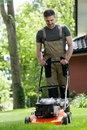 Man Mowing The Grass Stock Photo - 44621010