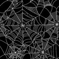 Halloween Spider Web Seamless Pattern Royalty Free Stock Photo - 44642315