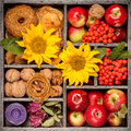 Autumn Composition In Wooden Box. Collage. Royalty Free Stock Photo - 44674525