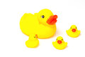 Rubber Yellow Ducks Family Royalty Free Stock Photo - 44677175