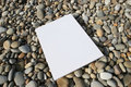 White Card Isolated Royalty Free Stock Photography - 4472037