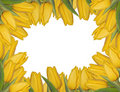 Yellow Tulips Frame Royalty Free Stock Image - 4479436