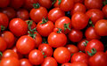 Tomatoes Stock Images - 44758424