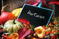 Pumpkins, Nuts And Empty Chalkboard Stock Photos - 44801073