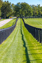 Double Fence At Horse Farm. Royalty Free Stock Images - 44821199